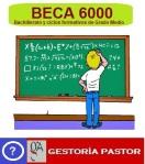 beca 6000_2018
